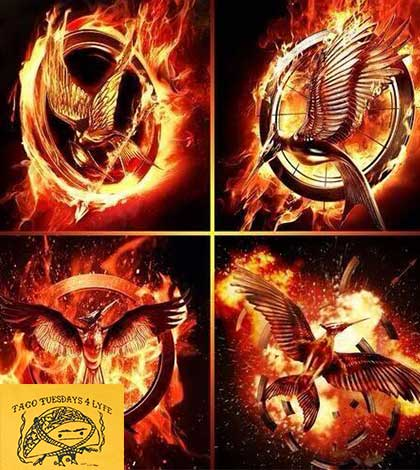 "hunger games movie vs book Book vs movie podcast (replay) ""the hunger games part 1 of suzanne collins' trilogy vs the jennifer lawrence megahit film the book vs movie podcast finally takes on the suzanne collins' classic 2008 novel the hunger games and compare it to the 2012 movie–both smash hits."